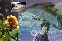 Дождливая погода в Украине