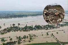 В Кабмине заявили, что вырубка леса в Украине упала на 20% и не является причиной наводнений