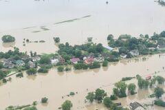 Вырубка деревьев приводит к разрушительным наводнениям в Карпатах, – эколог