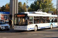В Днепре мужчина устроил драку в троллейбусе из-за просьбы надеть маску. Видео