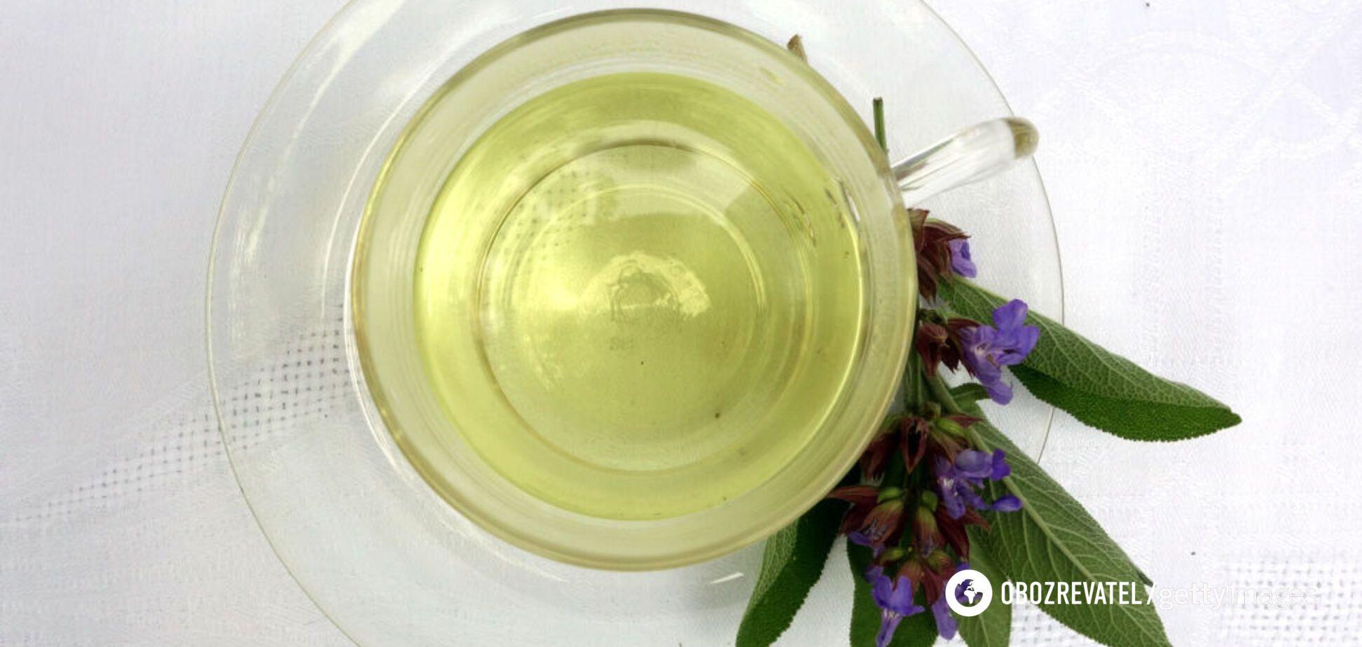 Топ-5 удивительных свойств чая из шалфея