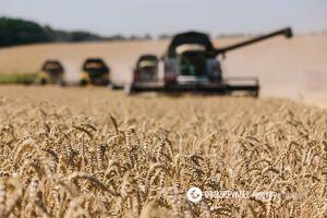 В Гидрометцентре сказали, будет ли урожай в 2020 году