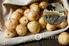 В Украине на четверть снизились цены на молодой картофель