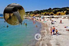 Курорты Одессы нужно закрыть - эколог