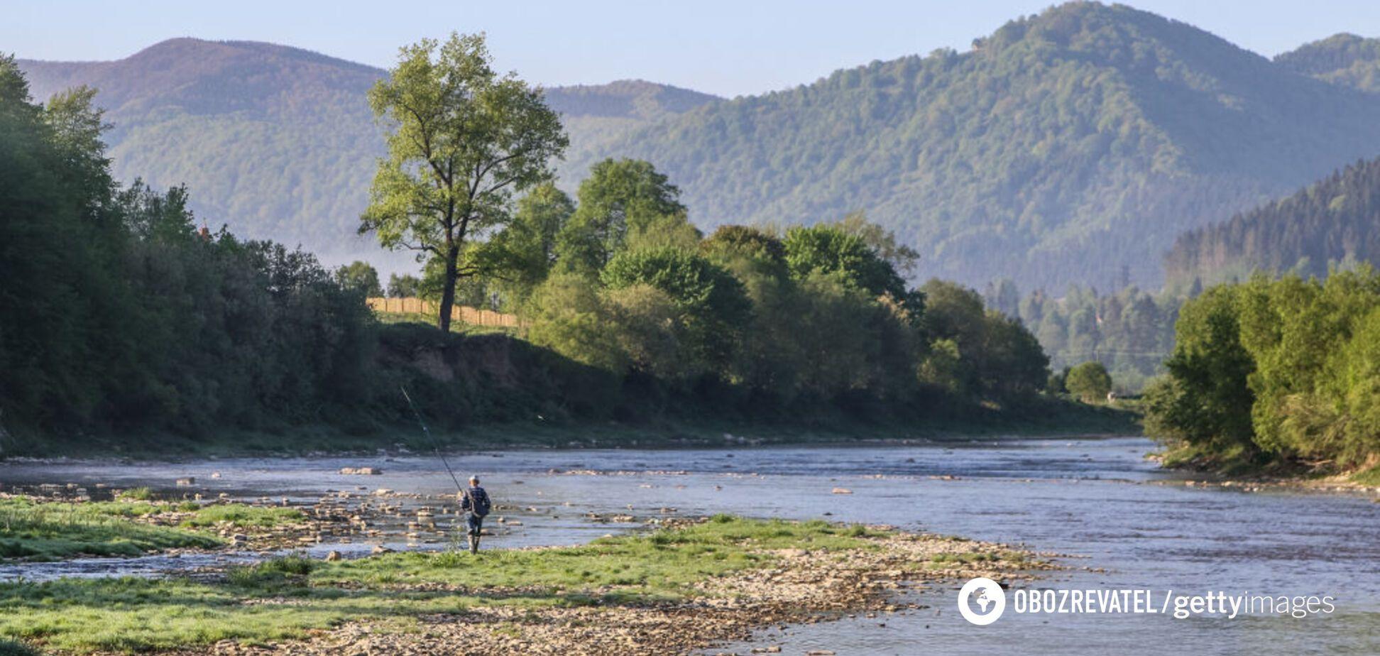 Еколог назвав головну шкоду карантину для природи України
