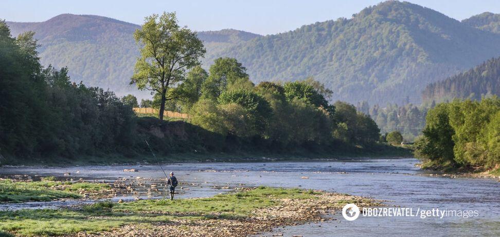 Эколог назвал главный вред карантина для природы Украины