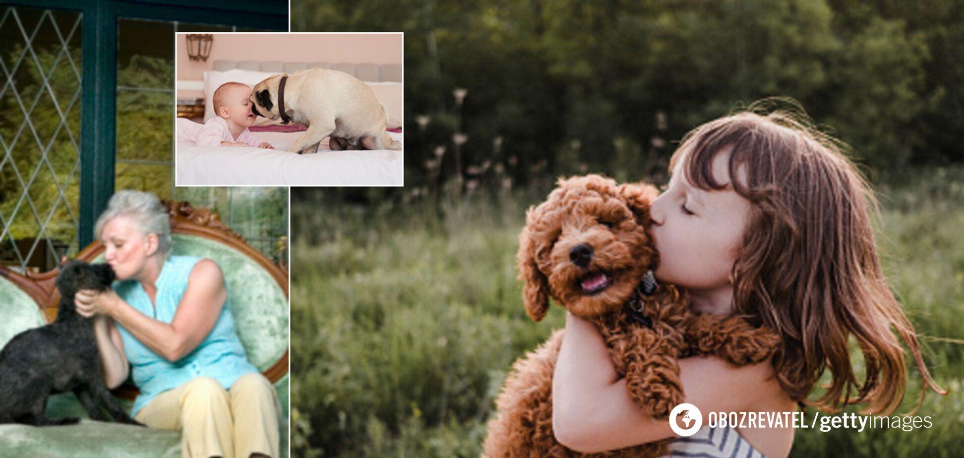 Целовать собак опасно: медики предупредили о пагубных последствиях