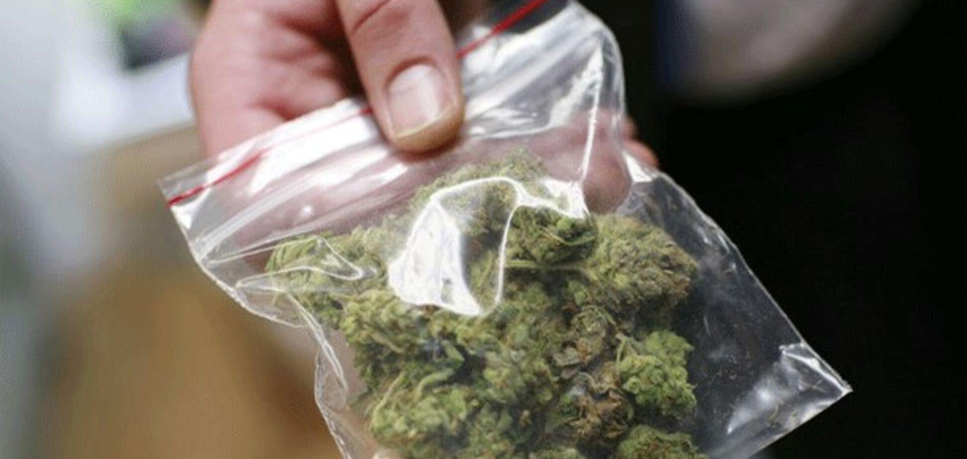 В Тернополе мыши сьели марихуану-вещдок: подозреваемого пришлось отпустить