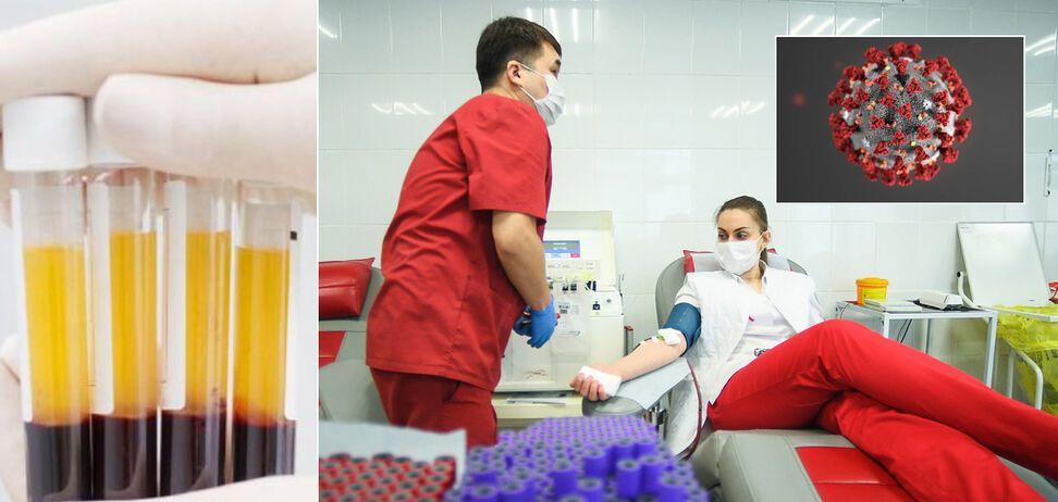 Вчені перевірили ефективність плазми крові при лікуванні COVID-19: оприлюднені показові результати