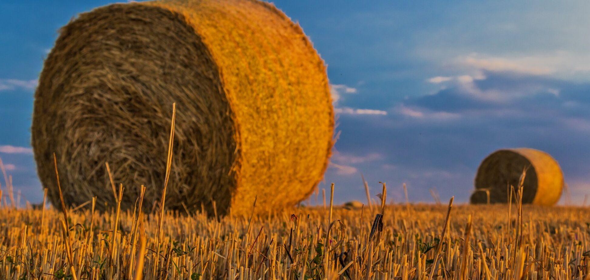 Земельный кадастр Украины проверит Всемирный банк