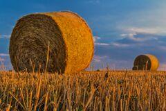 Земельний кадастр України перевірить Всесвітній банк