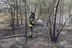 Пожары на Луганщине утихли: спасатели локализовали очаг. Фото