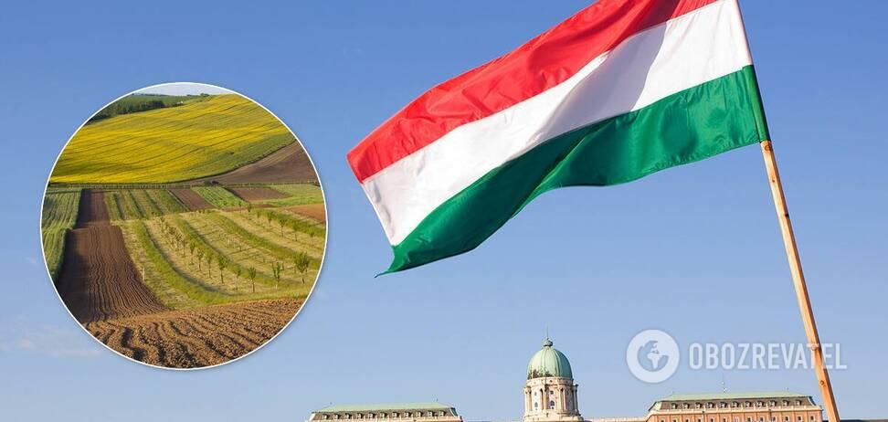 Венгрия планирует скупать украинские земли