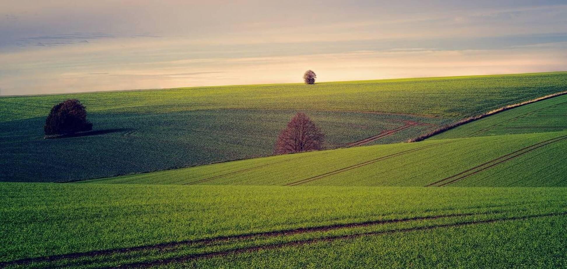 Рынок земли в Украине откроют с большими ограничениями – Госгеокадастр