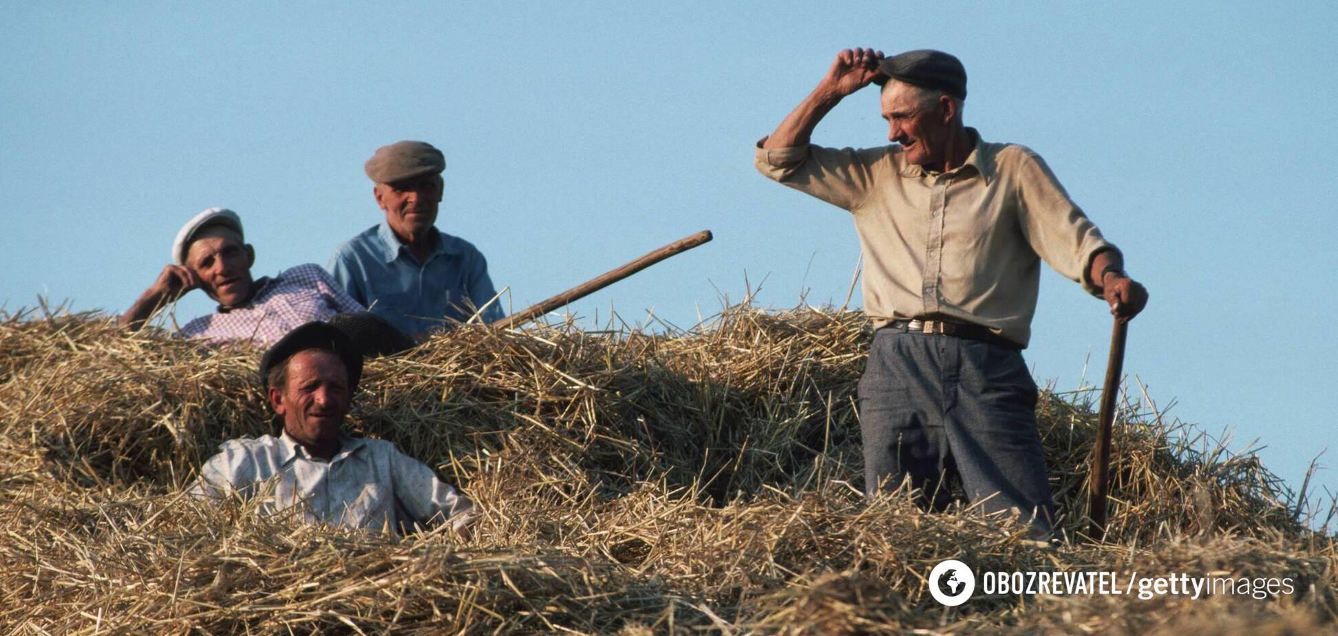 Курс валют в Україні тримає врожай, – економіст