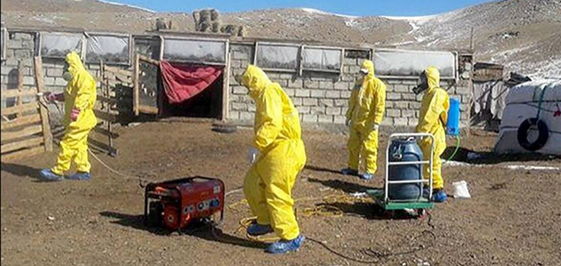 Бубонна чума в Монголії вбила 15-річного підлітка: 'згорів' за 3 дні