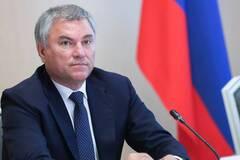 Госдума РФ приняла в первом чтении законопроект об экстремистских призывах