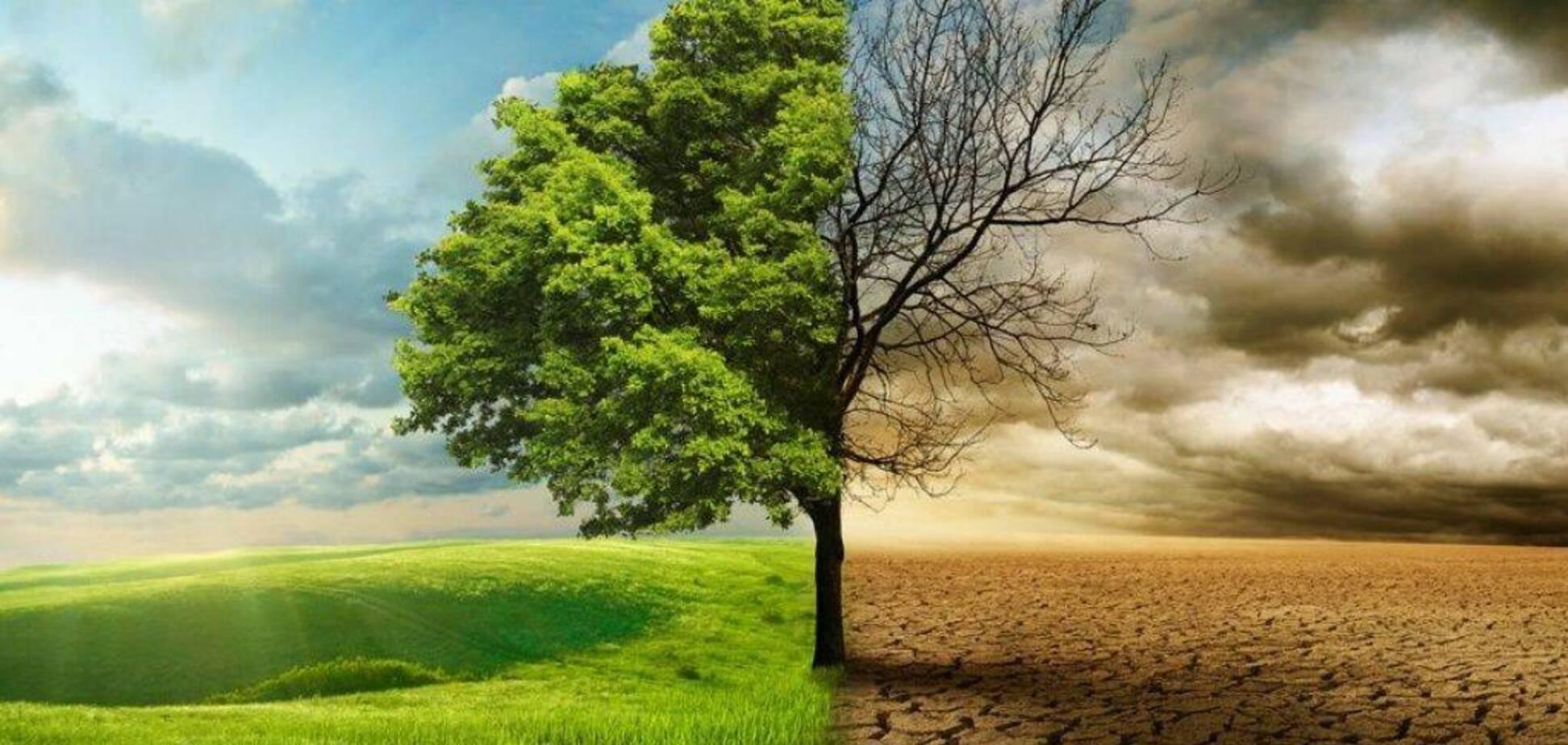 Синоптик рассказала об изменении климата в Украине. Источник: Фото: gospelcenteredwoman.com
