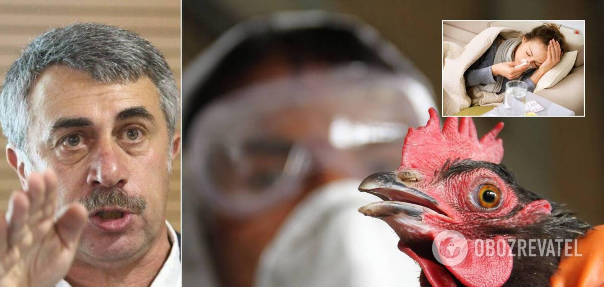 Комаровський розповів про пташиний і свинячий грип