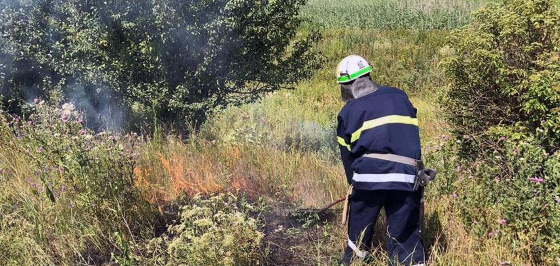 Дніпро і область накривають пожежі: люди масово спалюють сухостій