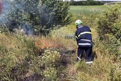 Днепр и область накрывают пожары: люди массово сжигают сухостой