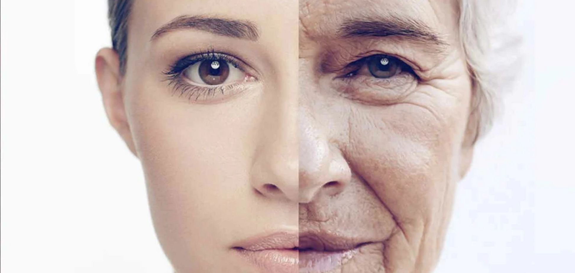 Розкрито основні механізми старіння