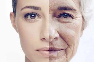 Раскрыты главные механизмы старения