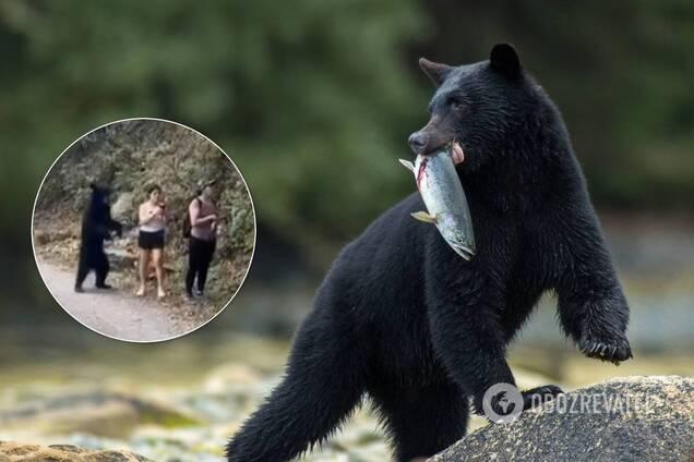 Медведь напугал туристок, когда те делали Селфи: момент сняли на видео