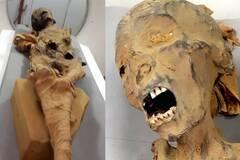 Раскрыта тайна смерти кричащей мумии из Египта