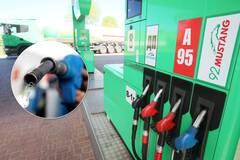 За неделю бензин и дизель в Украине подорожали