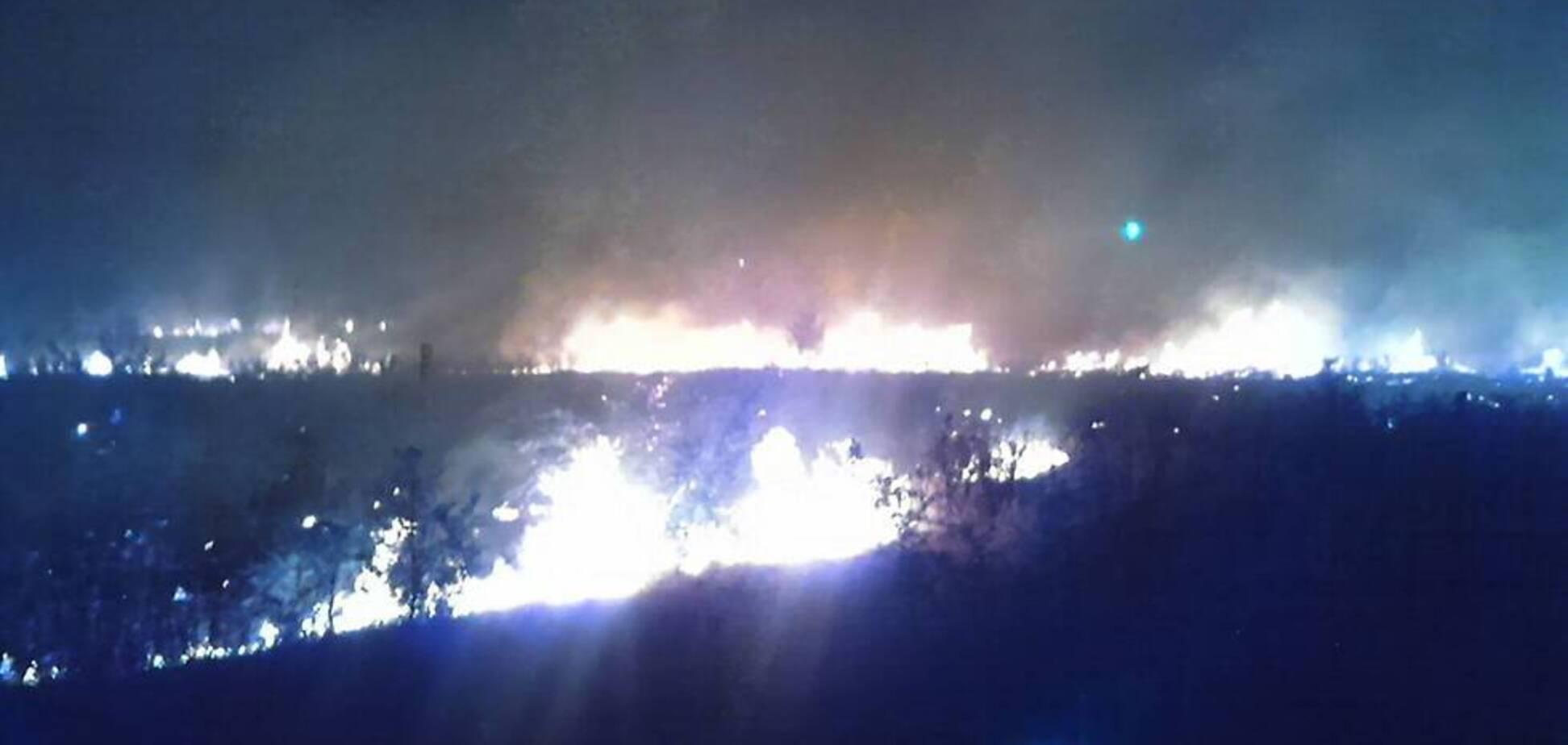 На Днепропетровщине вспыхнул масштабный лесной пожар. Фото и видео ЧП