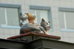 Скульптуры котов в центре Киева привели сеть в восторг