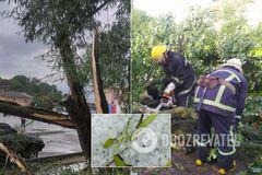 На Волыни пронесся мощный ураган: опубликованы фото последствий