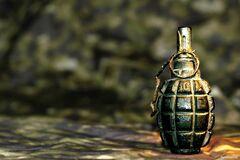 Под Черниговом мужчина взорвал гранату во время отдыха