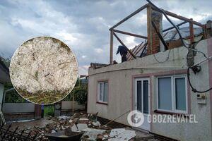 Ураган на Буковине сорвал крыши и валил деревья
