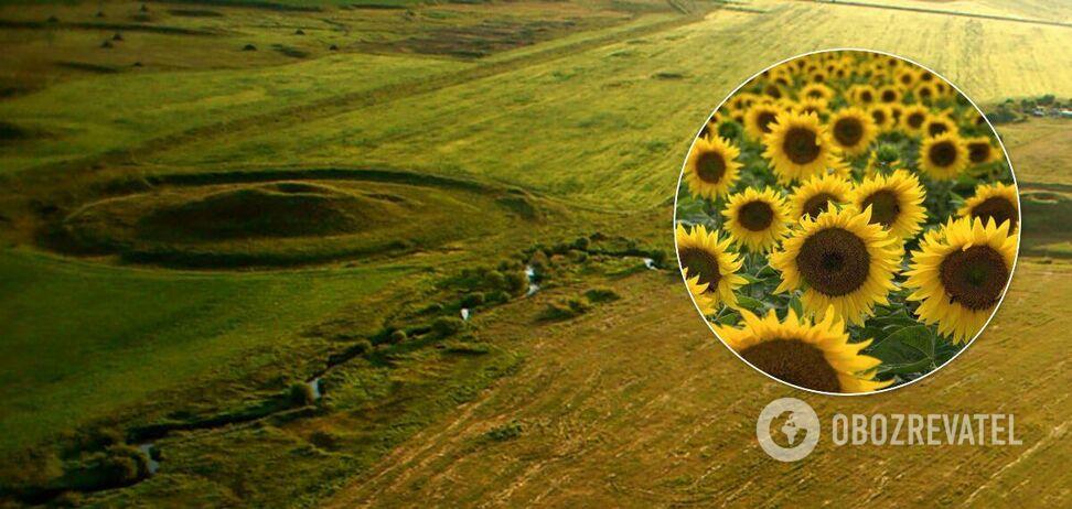 На Днепропетровщине древнюю достопримечательность превратили в сельхозугодье