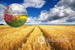 Як закінчиться літо в Україні: детальний прогноз погоди на серпень