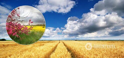 Как закончится лето в Украине: подробный прогноз погоды на август