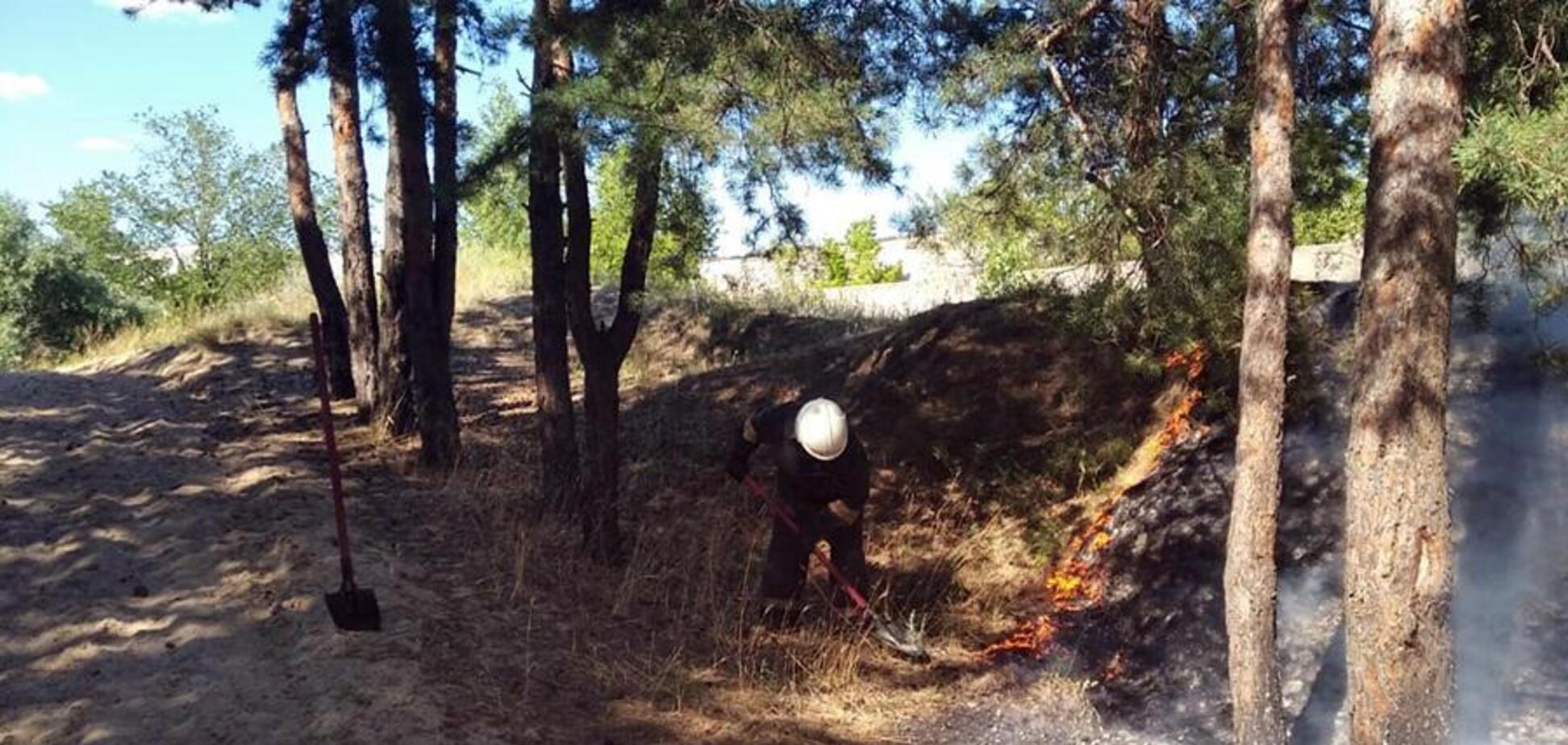 У Дніпрі та області збільшилася кількість пожеж: рятувальники звернулися до городян