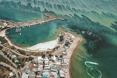Позеленевшее Черное море