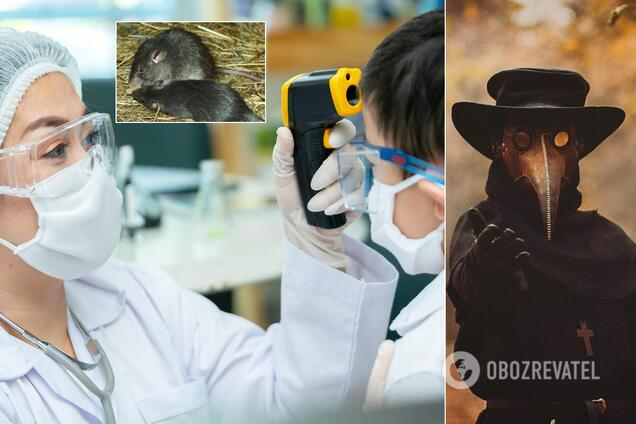 Світ почала вражати бубонна чума: чи потрібно боятися Україні нової пандемії