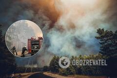 На Луганщине загорелись десятки гектаров леса