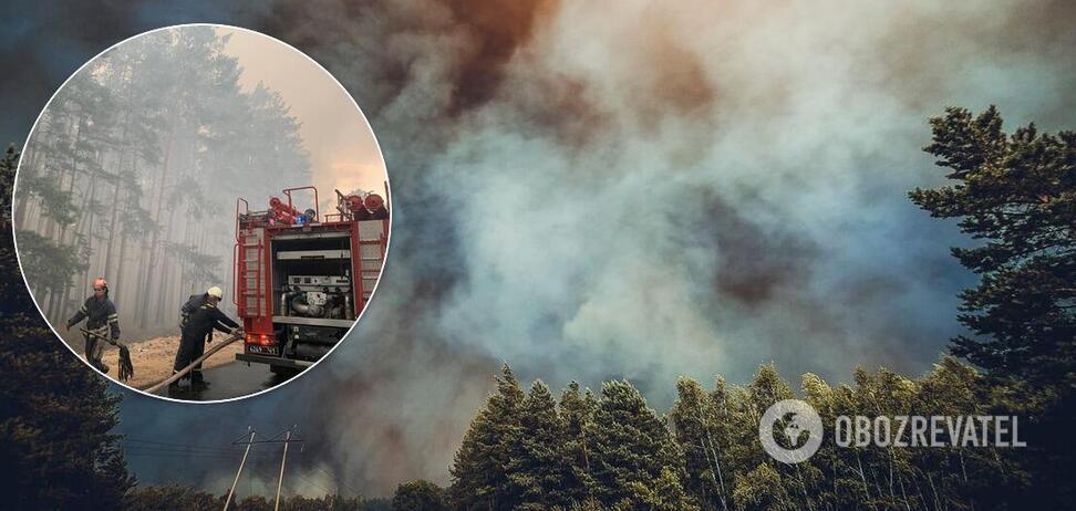 На Луганщині загорілися десятки гектарів лісу
