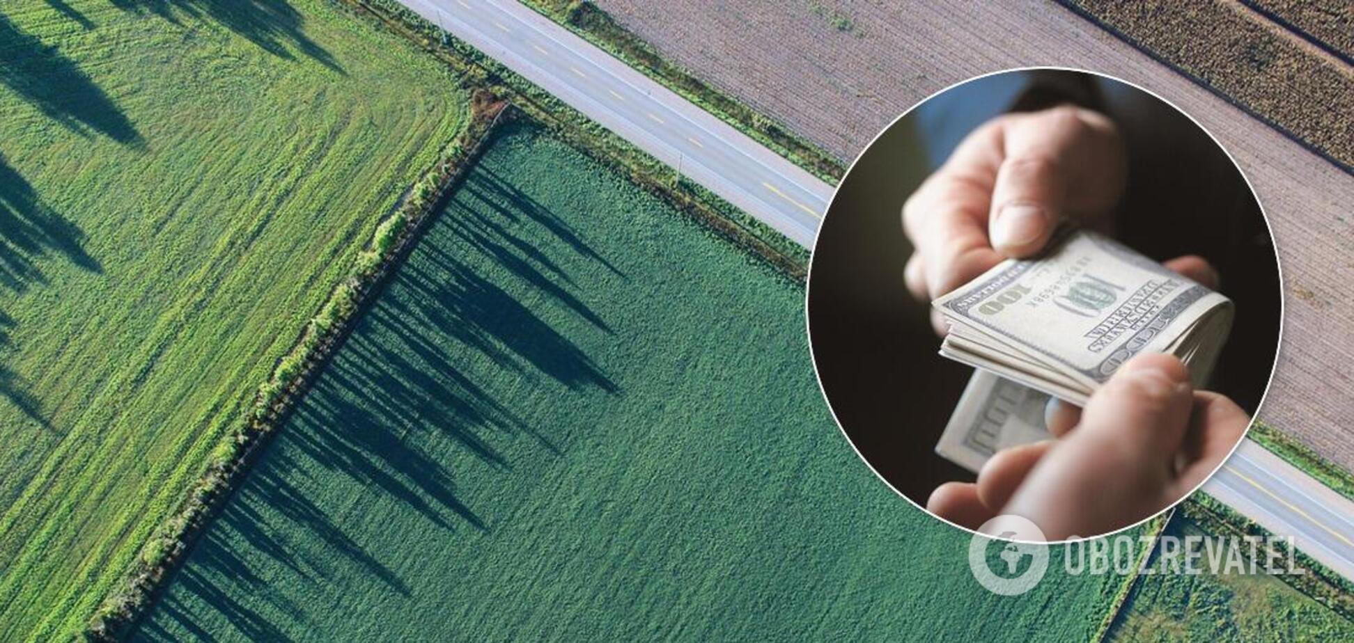 В Украине до сих пор нет реестра граждан, которые получили по 2 гектара земли, – глава Госгеокадастра