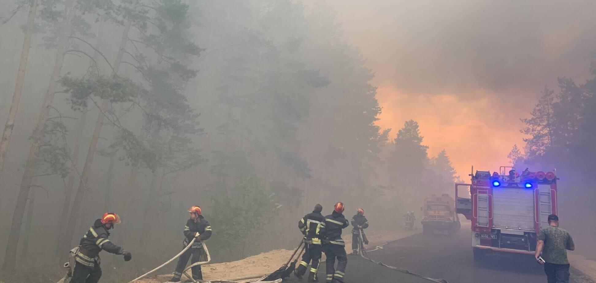 Лісові пожежі в Луганській області
