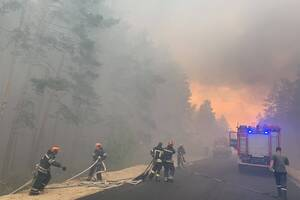 Лесные пожары в Луганской области