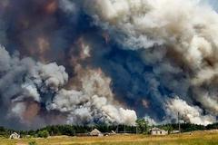 Пожар на Луганщине уничтожил целые гектары: фоторепортаж с места ЧП