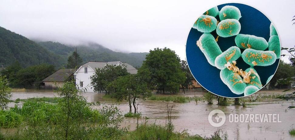 От гепатита до сибирской язвы: как наводнение на западе Украины может вызвать вспышку инфекций