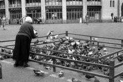 Женщина, которая кормила голубей в центре Киева в 1960-х годах