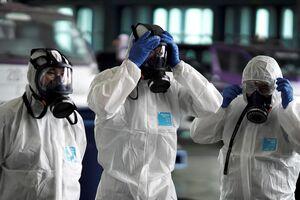 Бубонная чума снова убила человека в Монголии: где мог заразиться